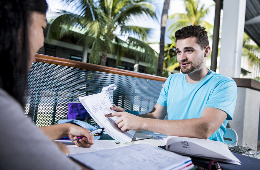 2 Students studying together on the lanai, with palm trees in 日e background,